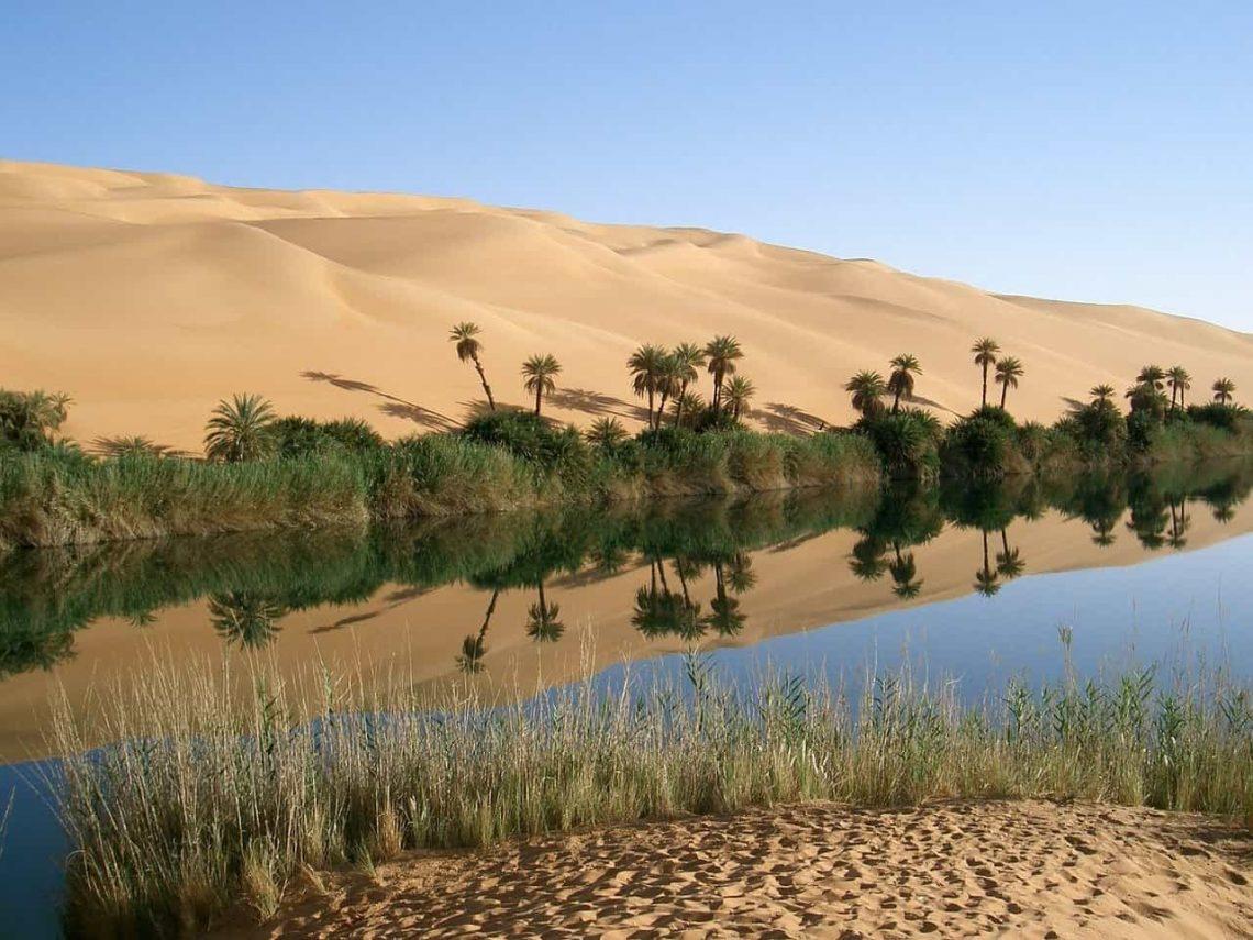 Egipt - oaza na pustyni