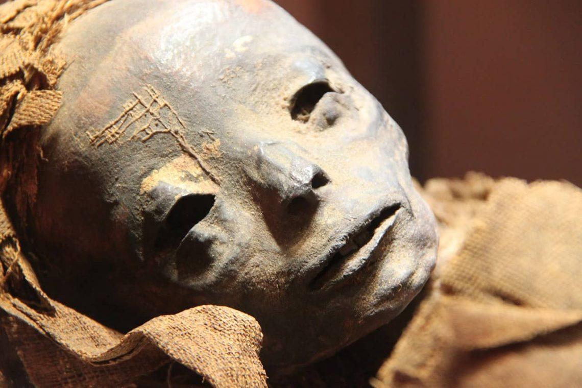 Mumia w egipskim muzeum