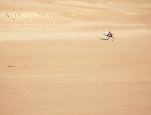 Pustynia Nubijska